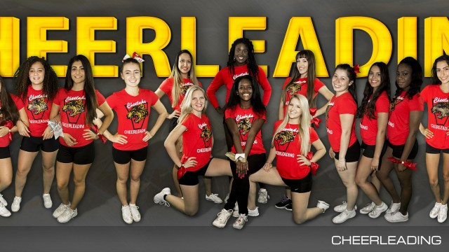 2015-2016 Cheerleading Team Photo