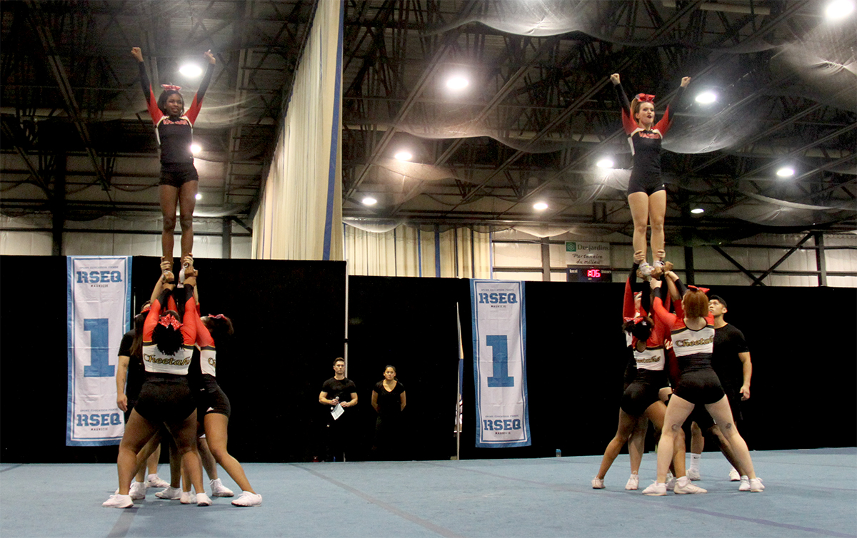 cheerleading team and action photos