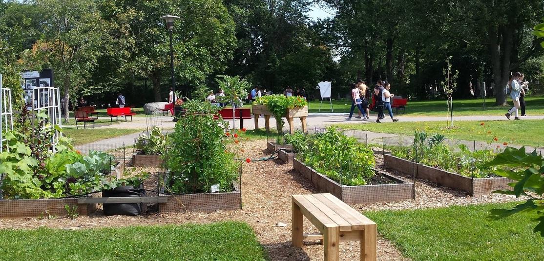 Collective Garden