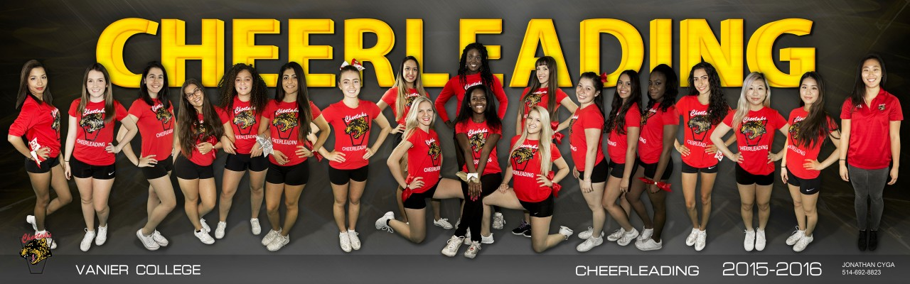 2015-2016 Cheerleading Team Photo