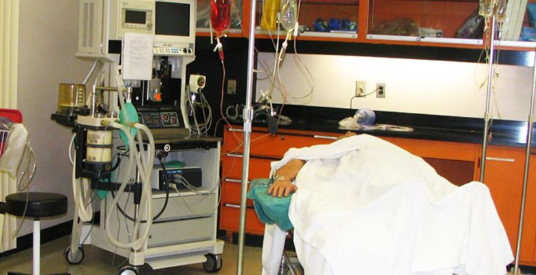 Handle life support and respiratory equipment